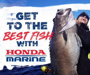 Honda Marine 300 x 250 Best Fish