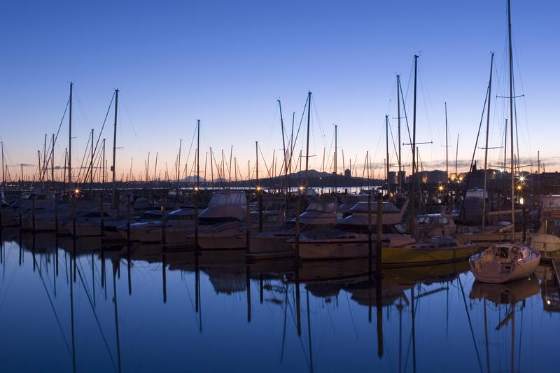 Westhaven Marina, Auckland, New Zealand - photo © Marinepests.nz