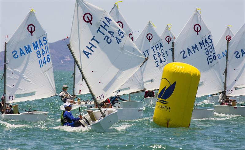 Top of the Gulf Regatta 2019. Optimist fleet. - photo © Guy Nowell / Top of the Gulf Regatta