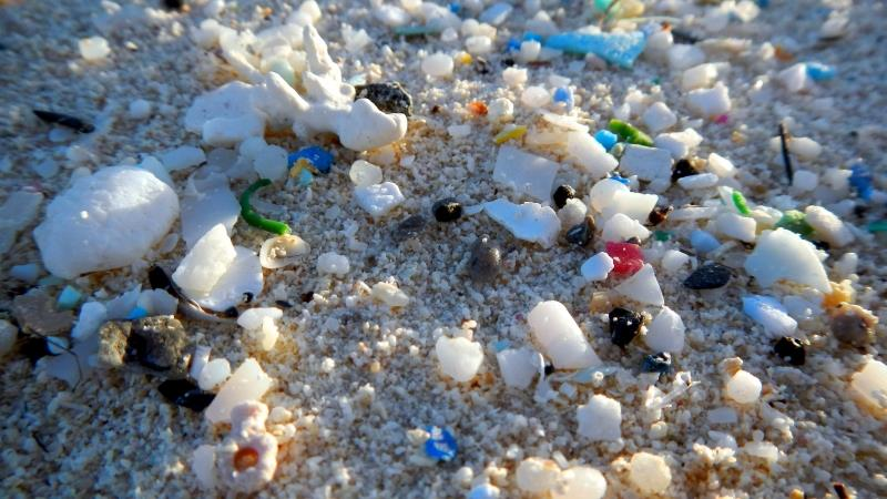 Microplastics are becoming a major problem on beaches around the world (NOAA) - photo © NOAA Fisheries