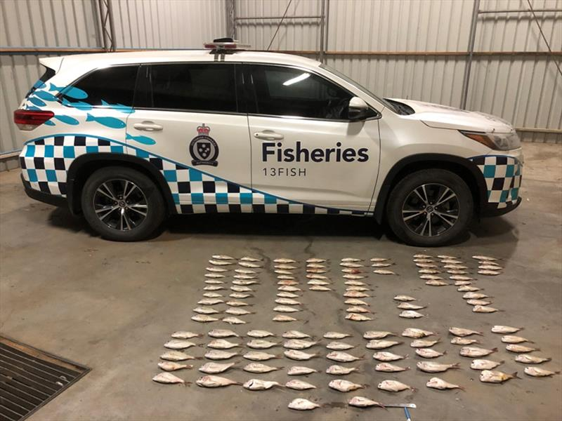 Two cars and illegal hauls of 119 undersize snapper were seized by Fisheries Officers photo copyright Victorian Fisheries Authority taken at