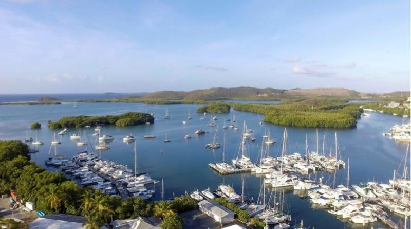 Dream Yacht Charter - photo © Antigua Sailing Week